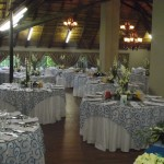 Weddings at Biekie Bos