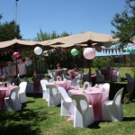 Biekie Bos Functions